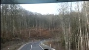 По гората