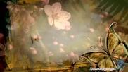Nicholas Gunn - Return Of The Butterfly