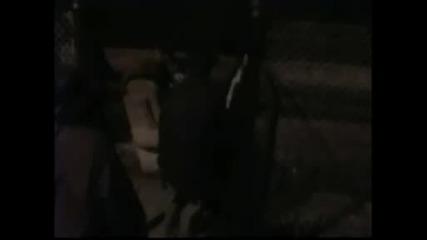 Ghostfox - Не Заспивай В Fox.wmv