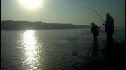 Риболов - Голям Амур в река Дунав