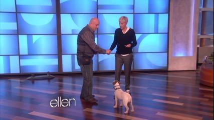 Куче се засрамва като го целунат