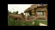 Планета Дерби 2010 - Търговище - Част 1