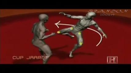 Muay Thai Techniques