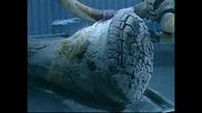 Мамути от ледената епоха