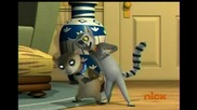 The Penguins of Madagascar - Feline fervor