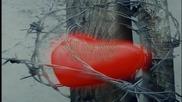 Превод! Rainbow - Desperate Heart (with lyrics)