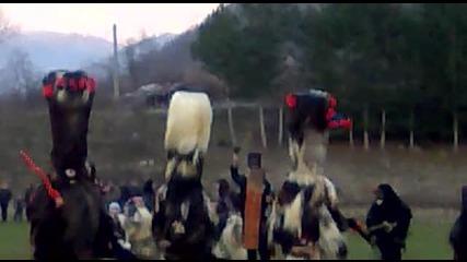 Крупник, група Драката 2011