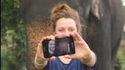Слон играе със Samsung Galaxy Note!!!трябва да се види