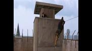 Vet Hard (2/7) Най - малумното бягство от затвора