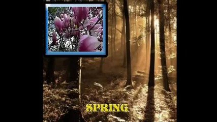 Пролет - изгряващо слънце