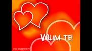 Gianni & Bina - Kolko Te Volim (prevod)