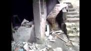 Последици от земетресението (смях) :d
