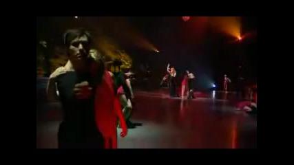 Celine Dion - I Surrender Live Превод
