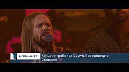 Концерт-трибют за DJ Авичи в Стокхолм