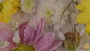 Проект - Прекрасная как цветы
