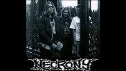 Necrony - Hills Of Cadavers