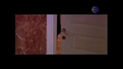 Камелия - Оставяш петна