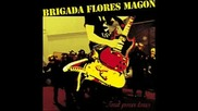 brigada flores magon - violene