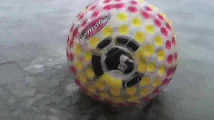 Дани и неговата топка