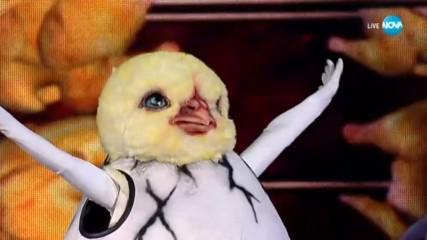 Пилето изпълнява Gangnam Style на PSY | Маскираният певец