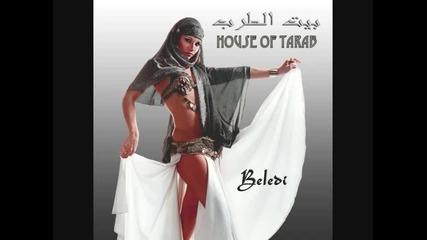new arabic house music 2010