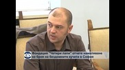 """Фондация """"Четири лапи"""" отчете намаляване на броя на бездомните кучета в София"""