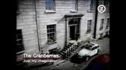 Cranberies