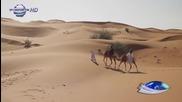 Стъпки в пясъка Галена и Преслава - Хайде, откажи ме