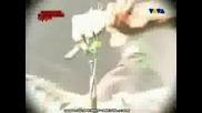 Slipknot - Live@london 05 - 25 - 2004 (pt14)