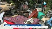 След потопа в Бургас - Рибарите искат узаконяване на селището си - Новините на Нова