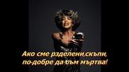 Tina Turner-simply The Best (тина Търнър-просто най-добрият) Превод
