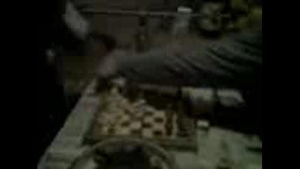 Самоводене - Тошко - Шахматист.3gp