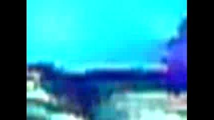 hmsu open air 2009 (kutina)