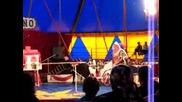 цирка