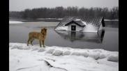 Наводненията в Сърбия - Дръж се любима Сърбио