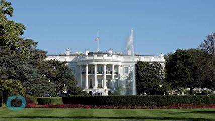 Dennis Haysbert as President on TV Is More Popular Than Obama