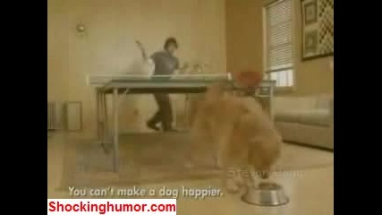 Тенис На Маса - Игра Между Човек И Куче