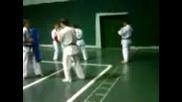 karate kyokushin-kan