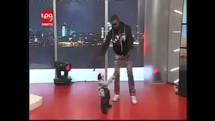 kukla igrae kiuchek