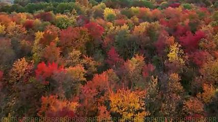 Kрасива ♚ есен
