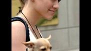 Hilary Duff & Lola (pics)