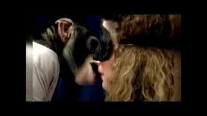 Тест за целувки - Голям смях