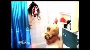 Най - голямото изплашване в тоалетната което сте виждали някога
