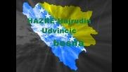 Hazre Hajrudin Udvincic - Bosna