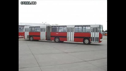 Автобусен Транспорт Малашевци - Скгт