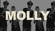 Buster !!! Tyga ft. Wiz Khalifa Mally Mall - Molly (new 2013)