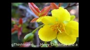 Весела Коледа И Честита Година!!! 2008