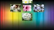 Обожавам пролетта, когато Земята сякаш се събужда!