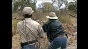 Лов На Антилопи
