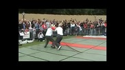 Wing Tsun демонстрация от Ирландия 2009